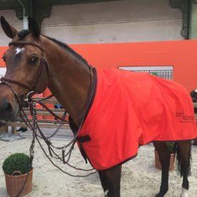 Carinjo*HDC remporte sous la selle de Patrice Delaveau le Prix Hermès Sellier