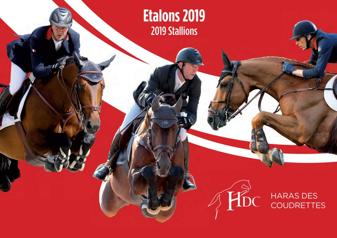 Stallions catalog